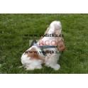 Postroj pro malé psy (menší) - stopovací typ